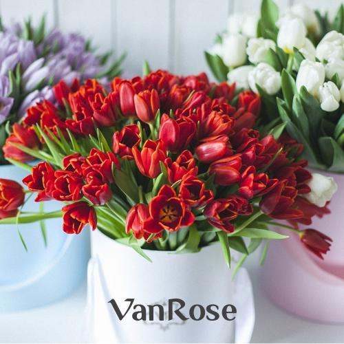Белые тюльпаны в красной шляпной коробке
