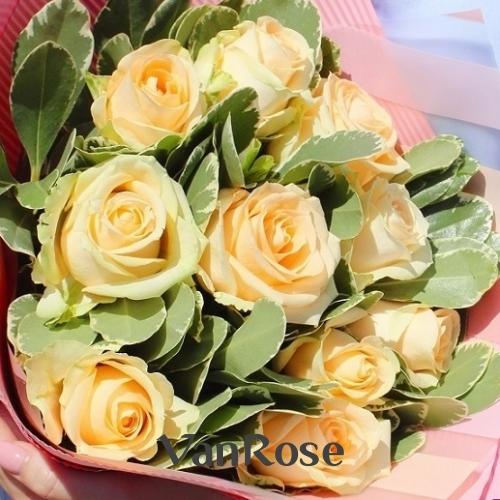 Букет из кремовой розы с зеленью в упаковке