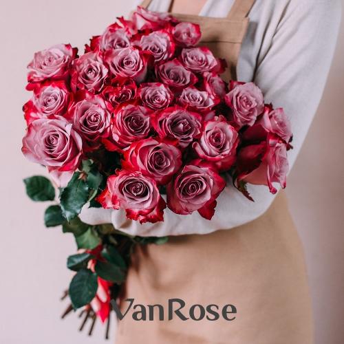 25 роз Эквадор Дип Вотер