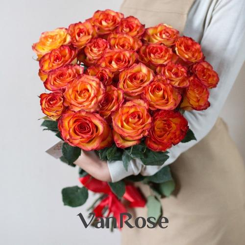 25 роз Эквадор Хай Мэджик